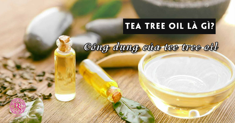 tea-tree-oil-la-gi
